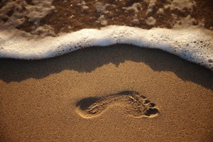 blog images - footprint